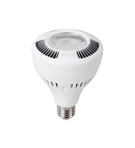 Ampoule Au LED 1068-PAR30-030