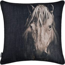 Coussin – Del Rio – Renwil – PWFL1357